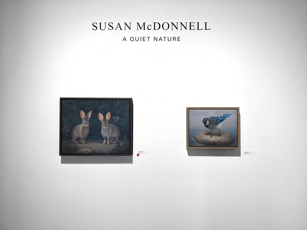 Susan McDonnell, A Quite Nature, Installation photograph