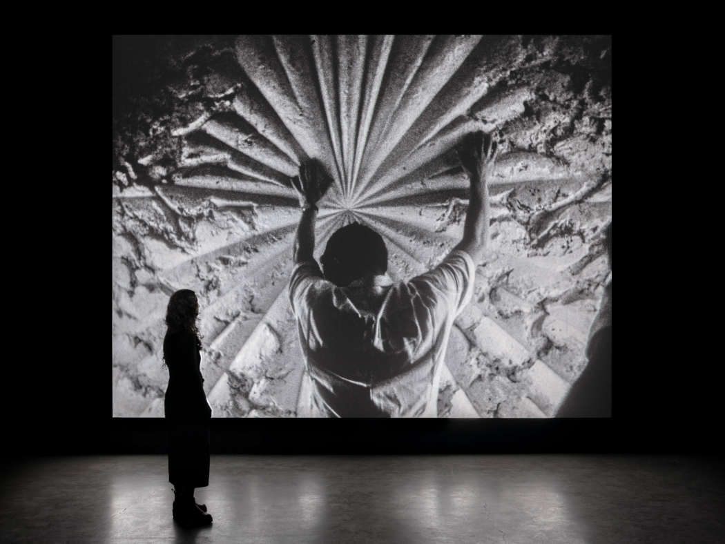 Installation view of Bruce Conner's THE WHITE ROSE