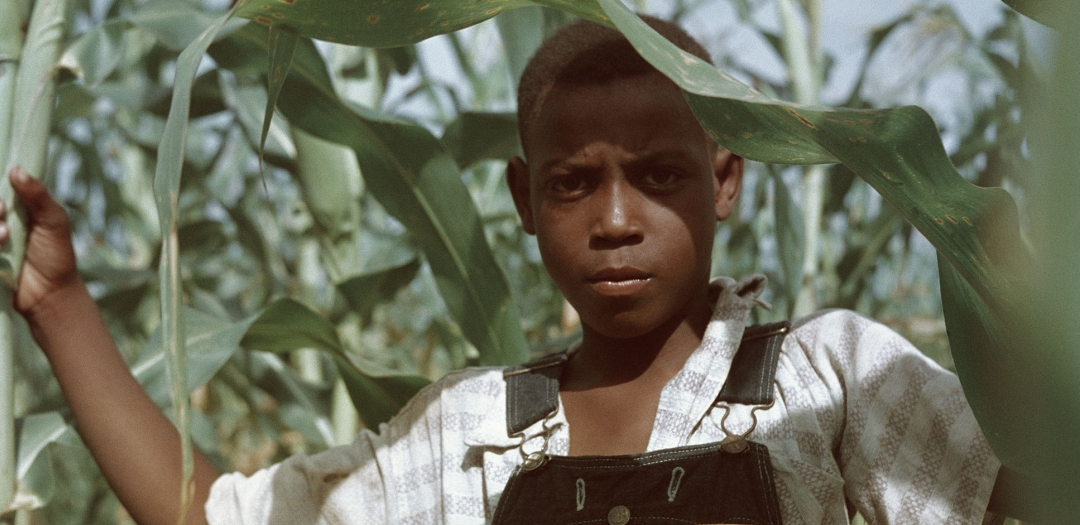 Gordon Parks: The Eye That Feels