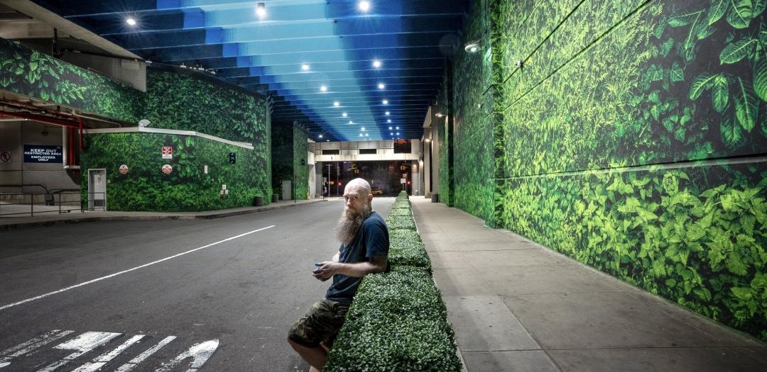 Logan Hicks: Tunnel Vision