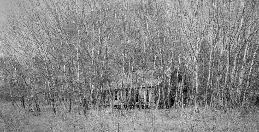 Abandoned Dogtrot Log House,  Howard Co, AR #81-134