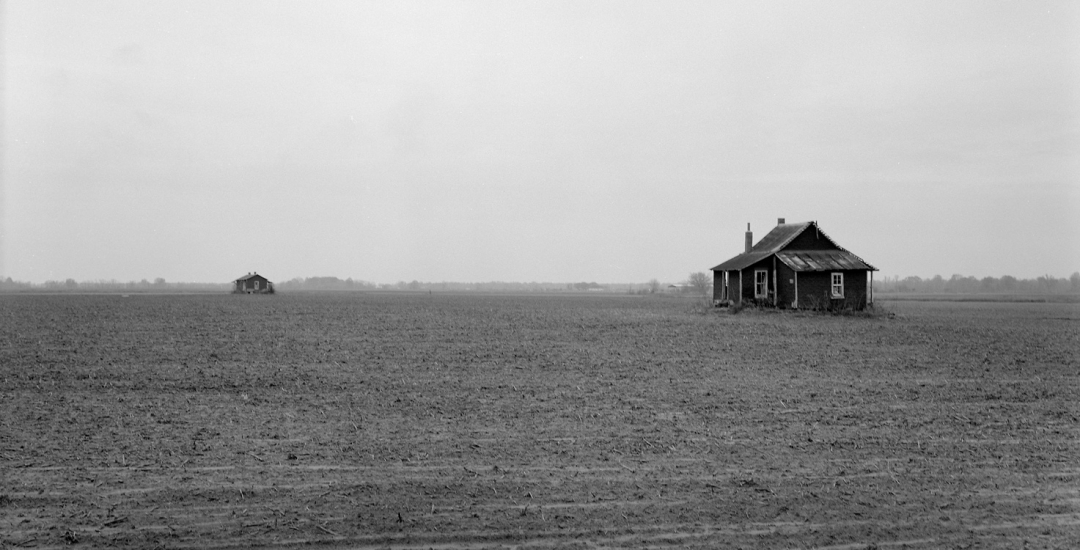Sharecropper Houses in Cotton Field, Monroe Co, AR #80-556-11