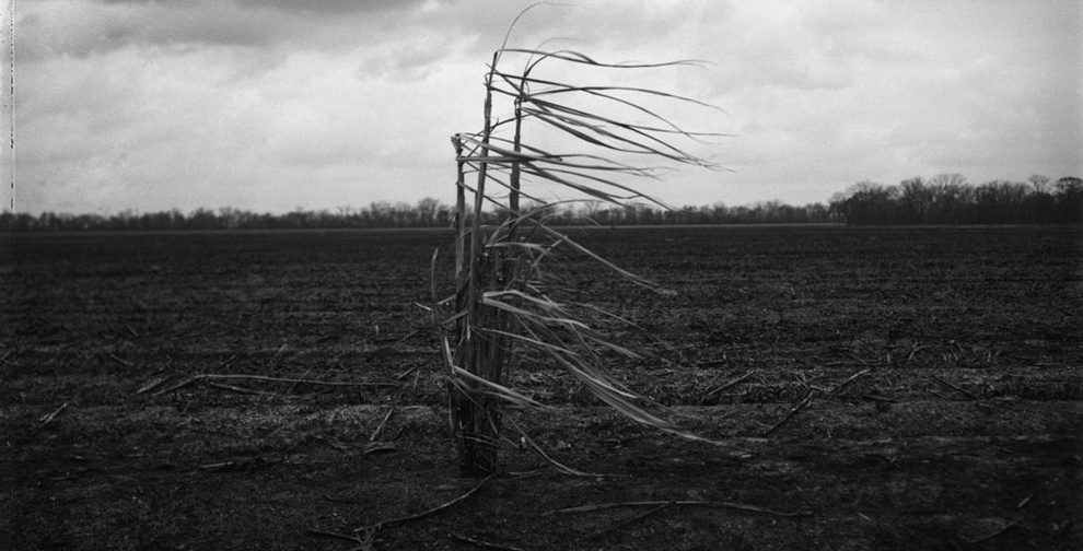 LaBarre, Louisiana, 2004