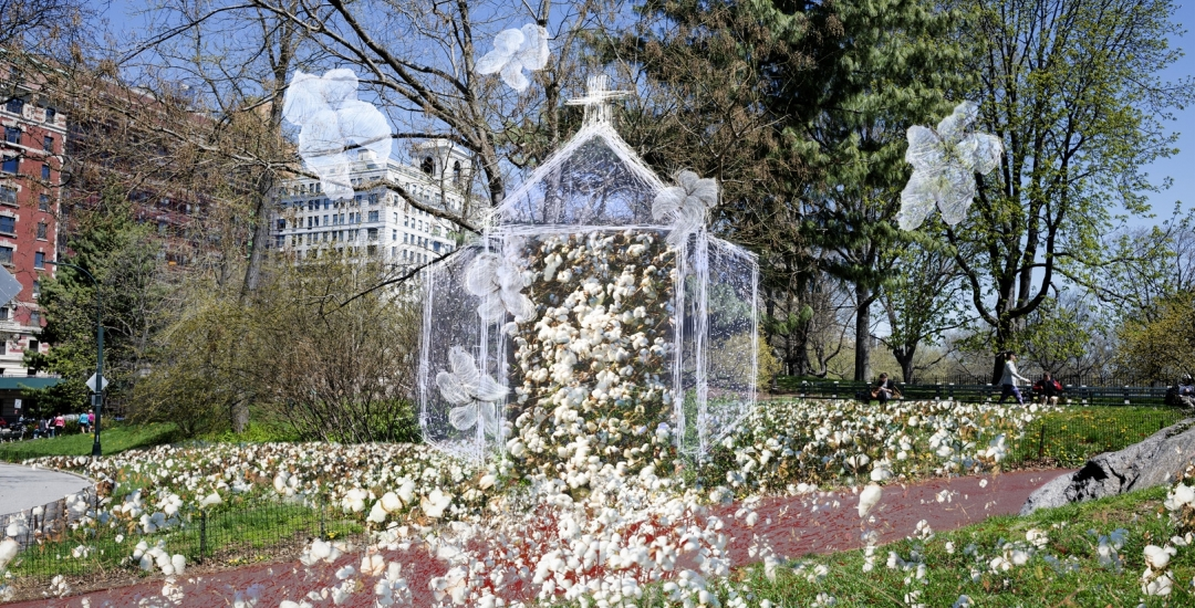 John Dowell: Cotton - Symbol of the Forgotten