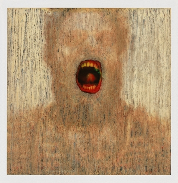 Lucas Samaras: Photo-Transformations