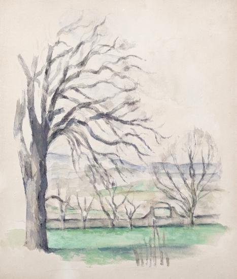 Paul Cezanne (French, 1839-1906) Arbre dépouillé au Jas du Bouffan, 1878-80    Pencil, watercolor, and gouache on white paper 14 x 12 in. (35.5 x 30.5 cm)