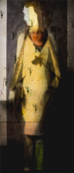 "Mary Hull Webster | Lucia Revealed | mixed media | 82.5"" x 36.5"" 6.75"""