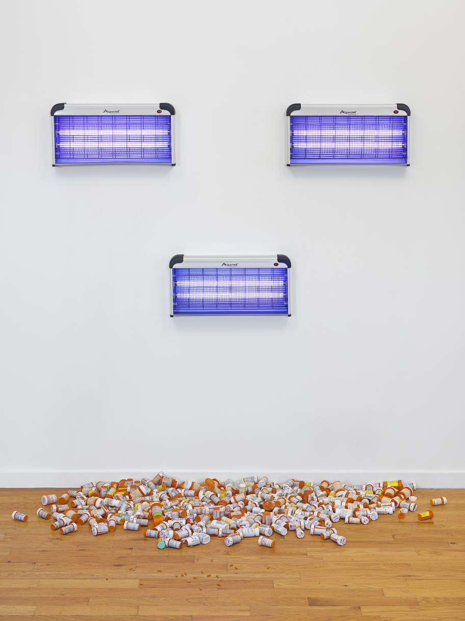 Jo Shane  All the Psychopharmeceuticals, 1995/2015 installation