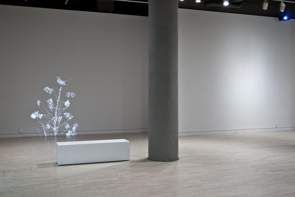 Nadia Hironaka and Matthew Suib Locks Gallery Whiteout