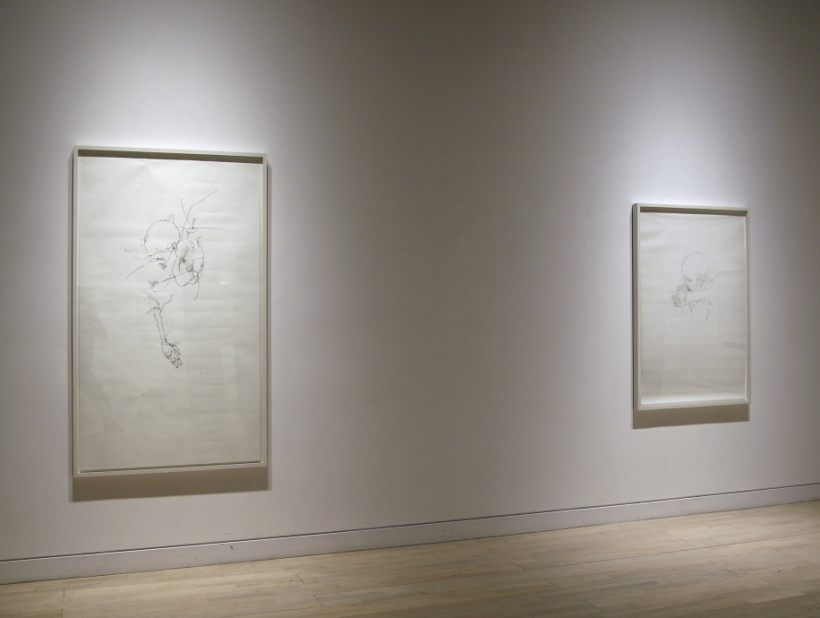 Bodies of Desire Works on Paper by Willem de Kooning and Chloe Piene Locks Gallery
