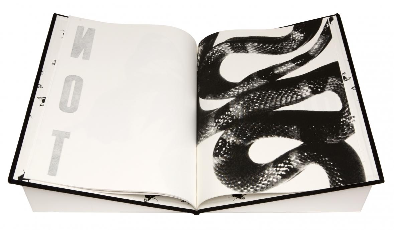 Rob Wynne book Locks Gallery