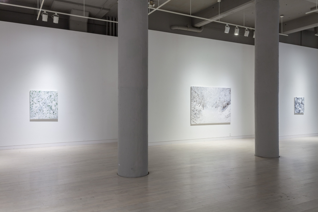 Kate Bright Locks Gallery