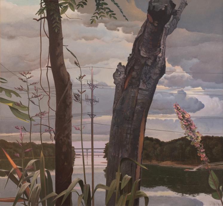 John Moore bay view