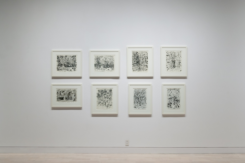 Edna Andrade Locks Gallery Drawings