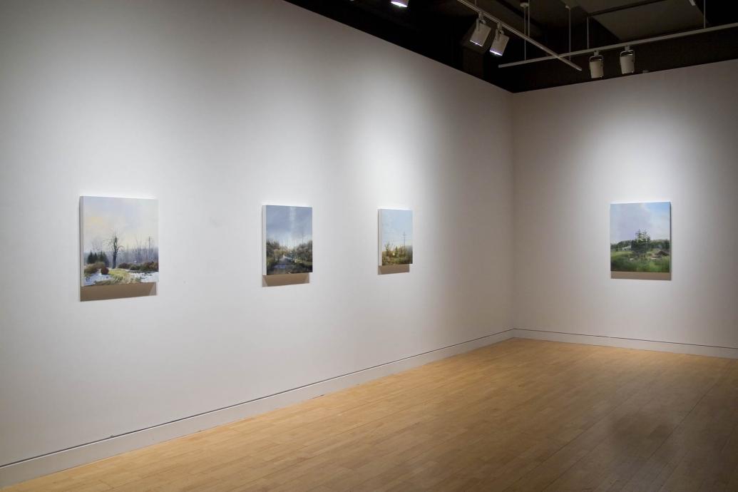 Sarah McCoubrey Mitigation Locks Gallery