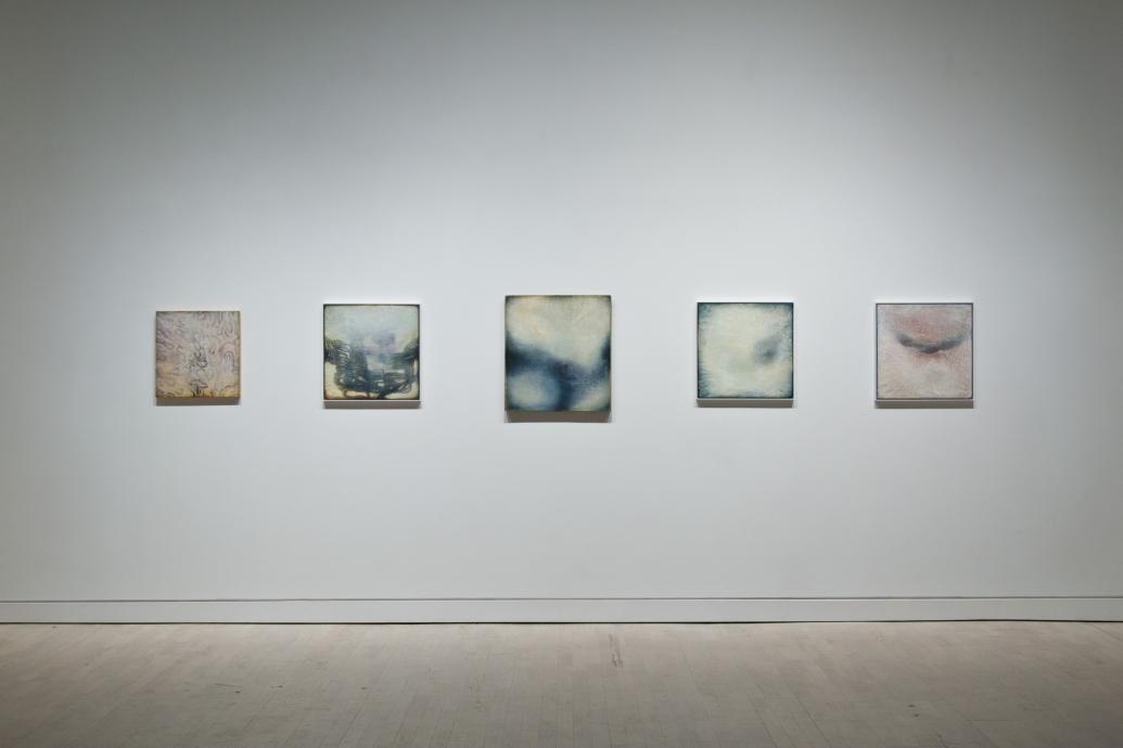 Neysa Grassi Locks Gallery