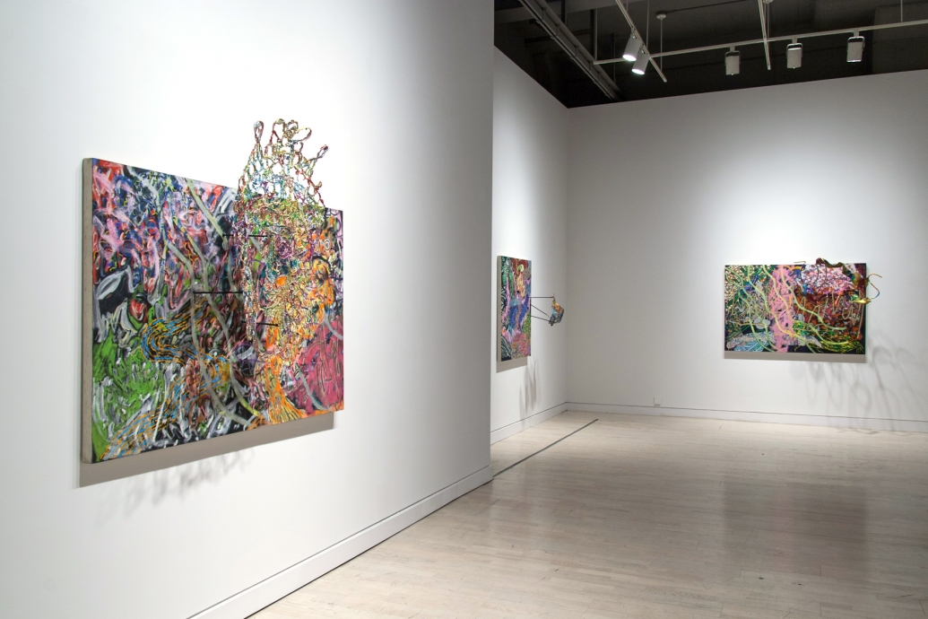 Nancy Graves Permanent Tension: Painting and Sculpture Locks Gallery