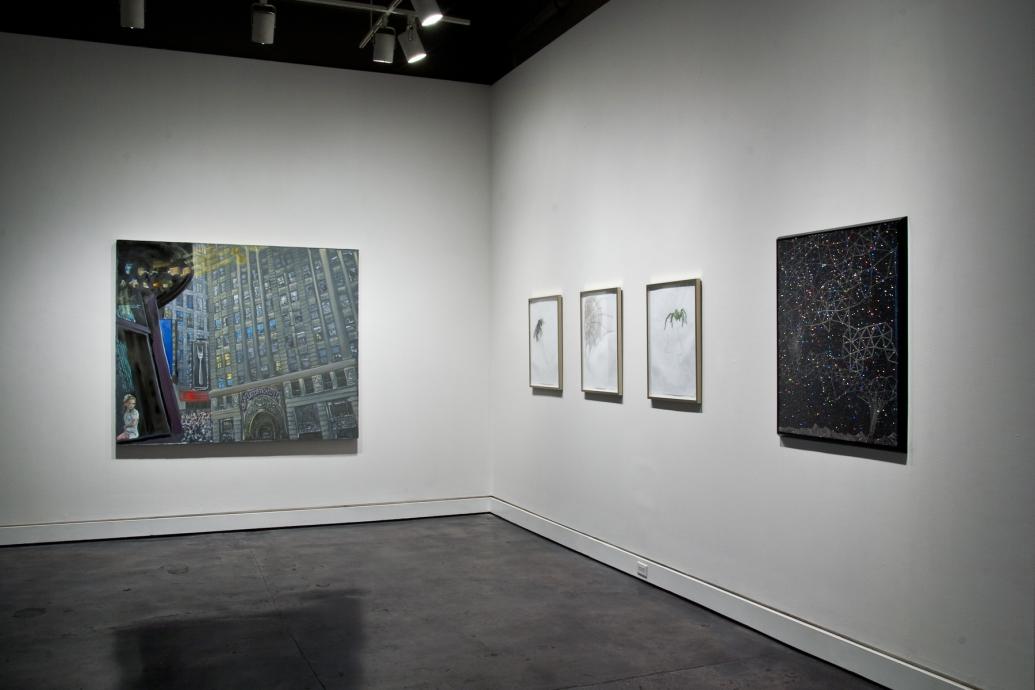 New Light Locks Gallery