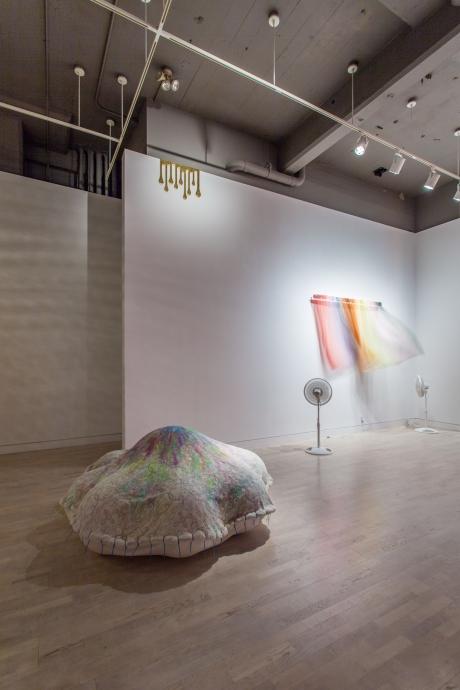 The Way Things Are: Ulla von Brandenburg, Florence Doléac, Virgil Marti Locks Gallery