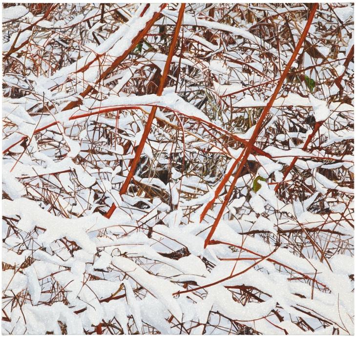 Kate Bright snow Locks Gallery