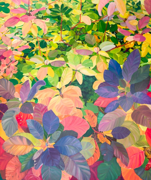 Kate Bright Locks Gallery Understory