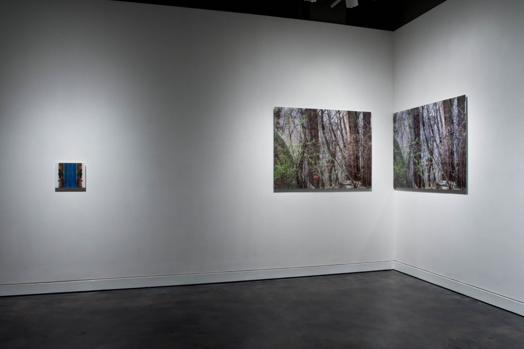Eileen Neff Locks Gallery Retrospection
