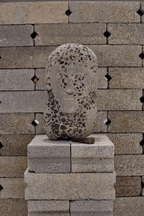 Prócer anónimo, 2015