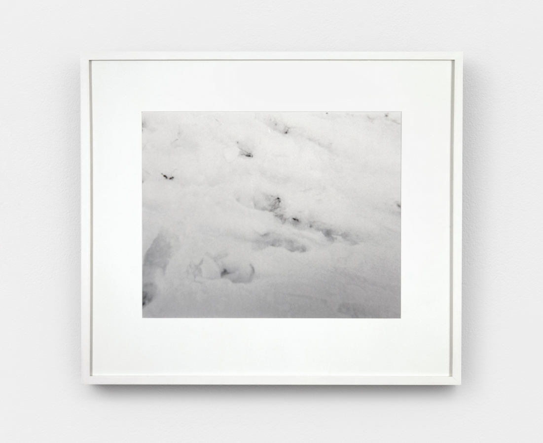 """""""Untitled"""" (A Walk in the Snow)"""