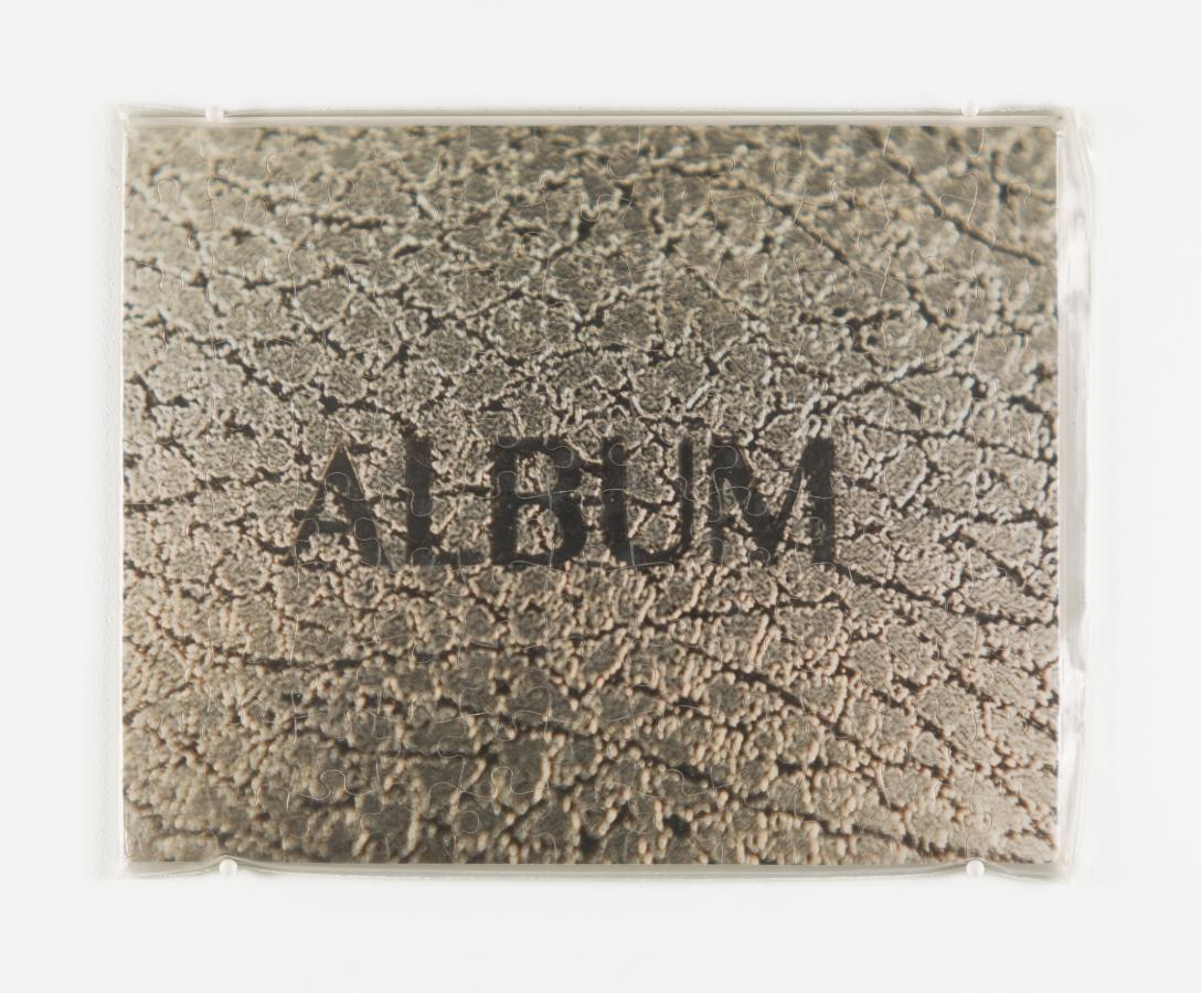 """""""Untitled"""" (Album)"""