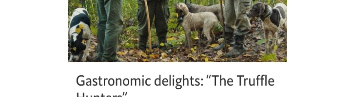 "Gastronomic delights: ""The Truffle Hunters"""