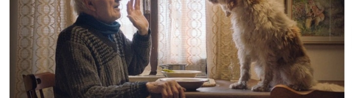 Luca Guadagnino On How Intimate Sundance Doc 'The Truffle Hunters' Mirrors Mob Epic 'The Irishman' & What He's Working On In 2020