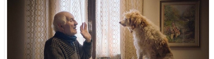'The Truffle Hunters': Film Review | Sundance 2020