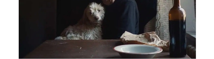Old men and their dogs in The Truffle Hunters