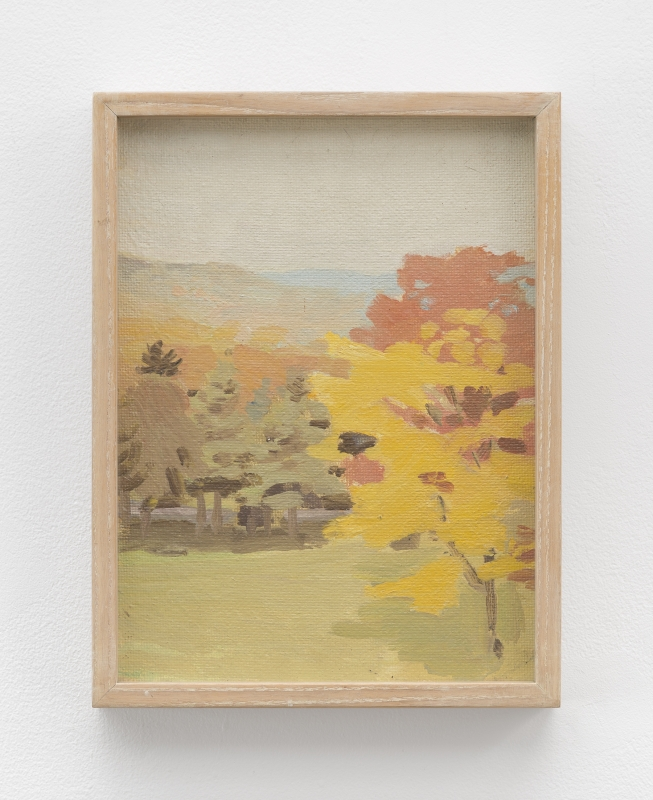 Image of Untitled [View of Pelham hills with tree from Fayerweather Hall