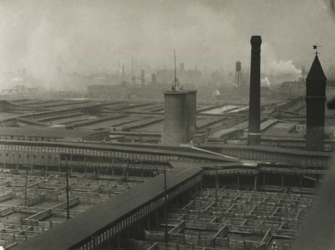 E. O. Hoppé - Stockyards, Chicago, Illinois, 1926 | Bruce Silverstein Gallery