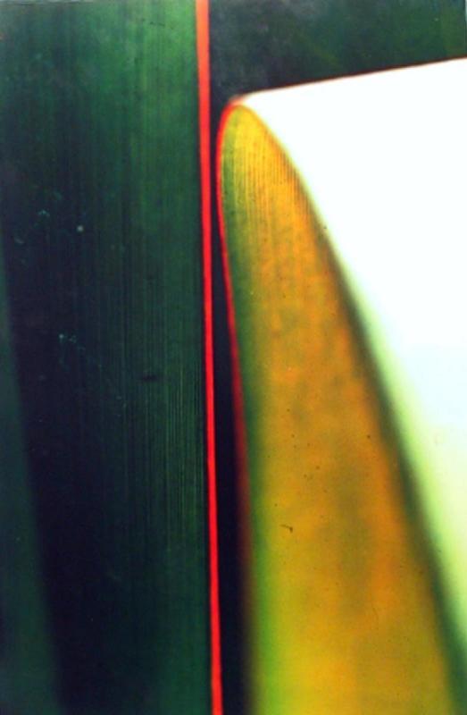 Ernst Haas -  Cactus Leaf,1969  | Bruce Silverstein Gallery