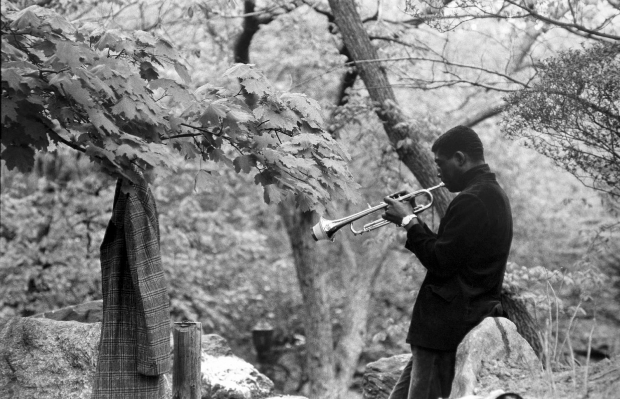 Frank Paulin - Musician Practicing, Central Park, 1956 Gelatin silver print | Bruce Silverstein Gallery