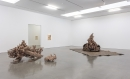 Matthew Barney - Water Castings