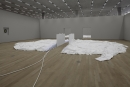 Matthew Barney - Drawing Restraint