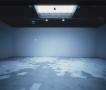 Ann Hamilton Sean Kelly Gallery