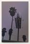 Total Lack of Remorse, Glen Rubsamen, Christopher Grimes Gallery