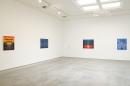 Sharon Ellis, Christopher Grimes Gallery