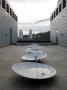 Dane Mitchell, Busan Biennial