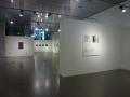 Julião Sarmento, Christopher Grimes Gallery