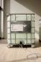 Dane Mitchell, Biennale of Sydney