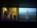 Julião Sarmento, An Extreme Form of Privacy, Museo de Arte Carrillo Gil