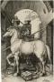 Albrecht Dürer, The Small Horse, 1505