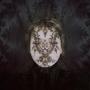 Trine Søndergaard -  Untitled, Lace #2,2015    Bruce Silverstein Gallery
