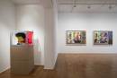 Derrick Adams: LIVE and IN COLOR ​Installation View