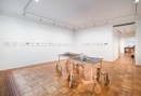 Jarbas Lopes: A Line Installation View